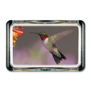 Hummingbird paperweight