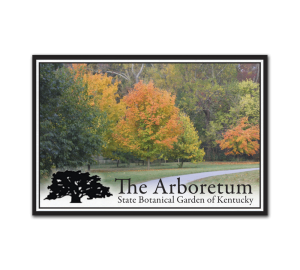 Custom Museum Magnet for Botanical Garden photo of trees