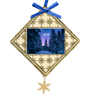 Custom ornament with night sky and pine trees