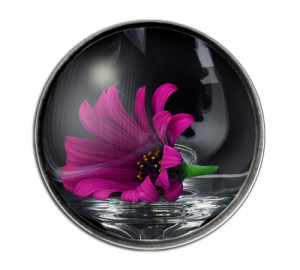 Custom Glass Dome Paperweight Example