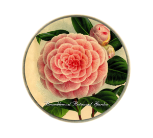 Custom Glass Regular Dome Paperweight - Flower